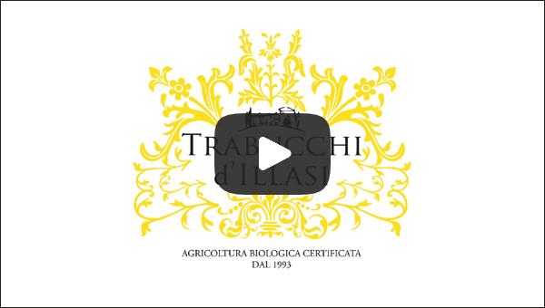 video-homepage